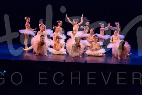 01740 Fotos espectaculo Danza en familia